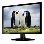 HannsG 49,5cm (19,5) HP205DJB 16:9 DVI LED black lift Spk