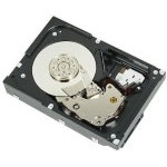 DISCO DURO DELL 1TB 7.2K RPM SATA 6Gbps 512n 3.5in Cabled Hard Drive, CK